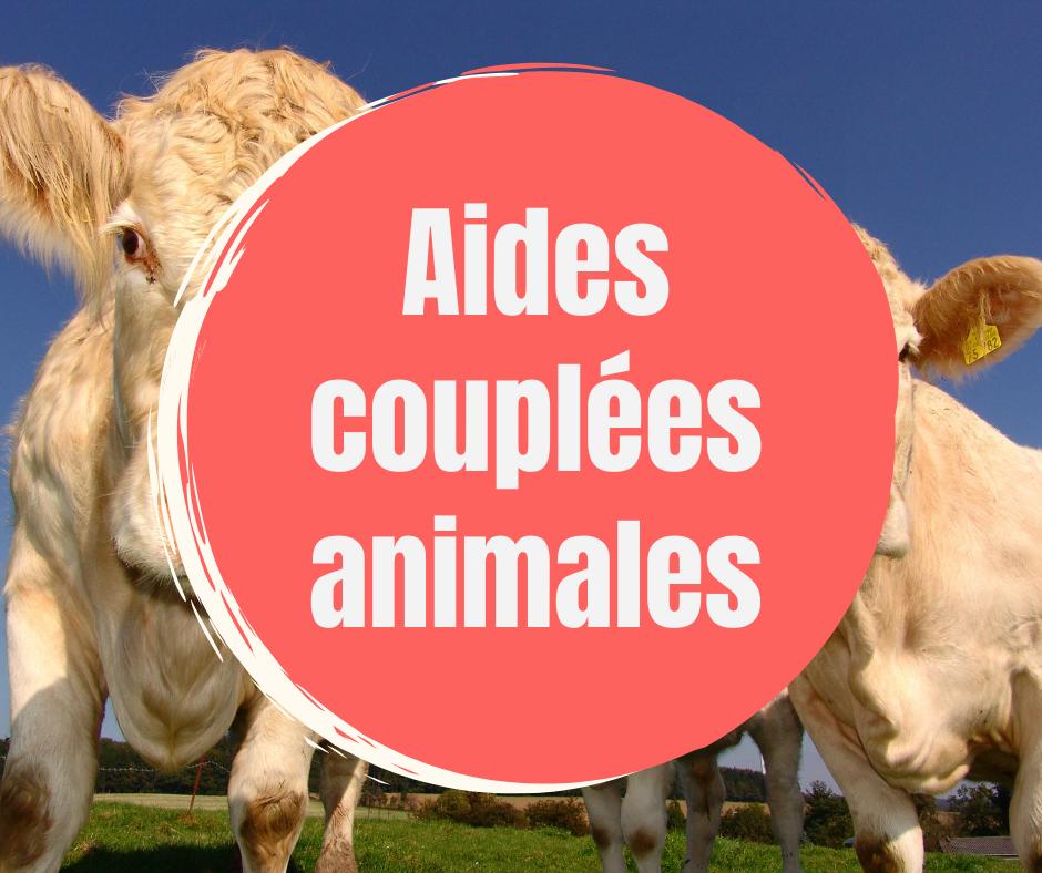 Aides c animales