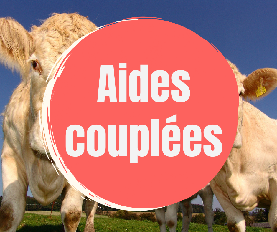 Aides couplees