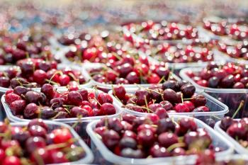 Cherries 1433525 1920