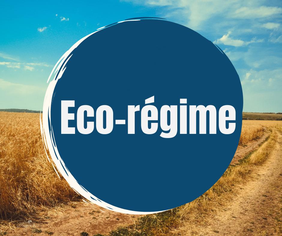 Eco regime